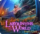 เกมส์ Labyrinths of the World: Fool's Gold