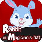 เกมส์ Rabbit In Magician's Hat