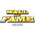 เกมส์ Wall of Fame